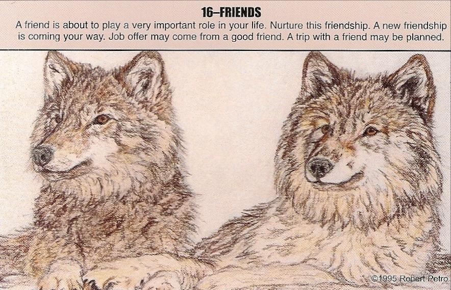 Wolf_-_friendship
