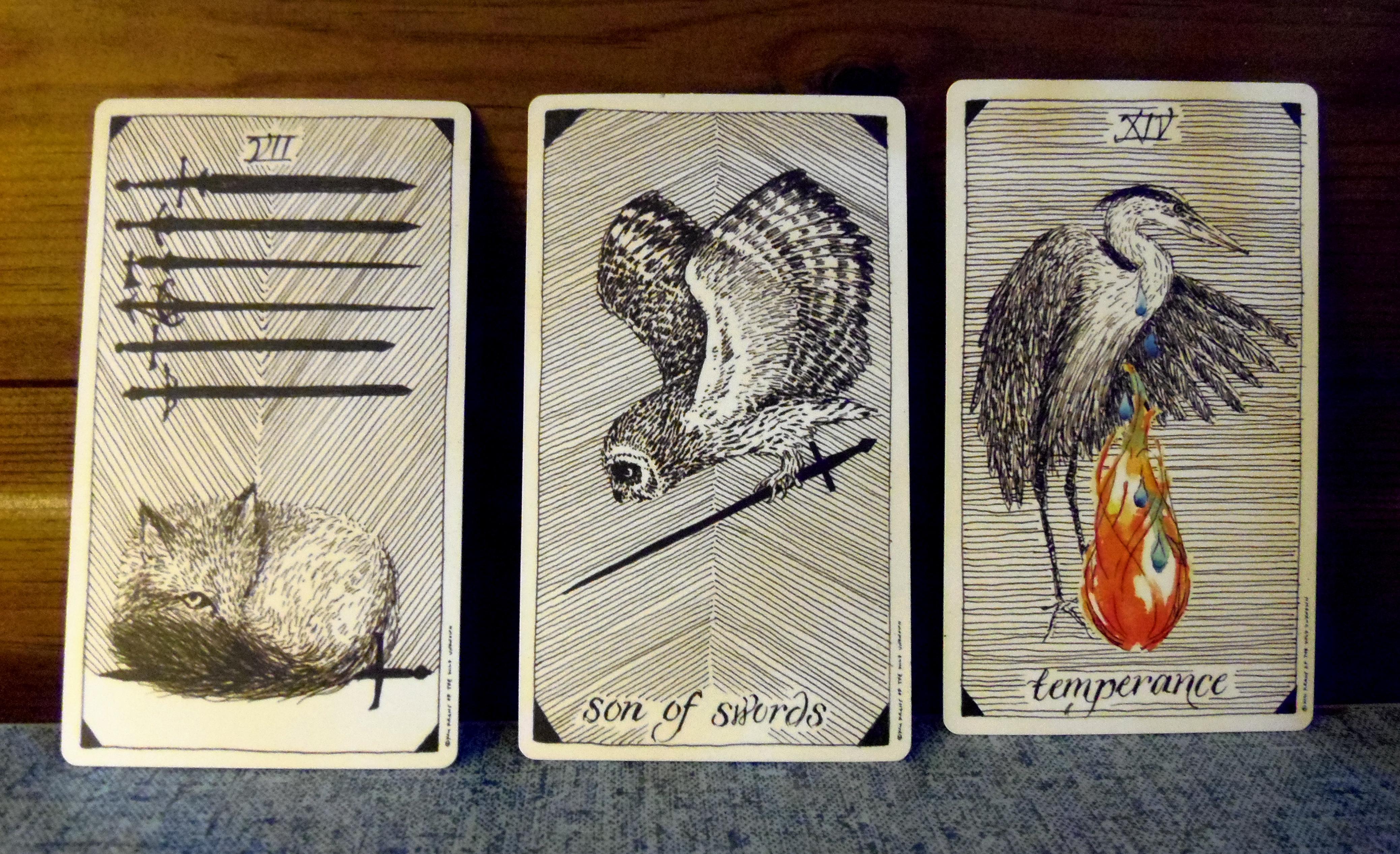 Tarot reading Wild Unknown 4.1.14