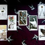 Full moon tarot reading