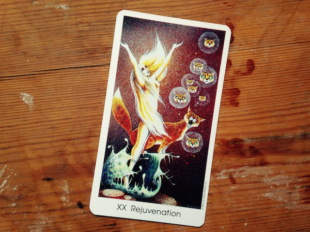 tarot-of-the-cat-people-rejuvanation-card