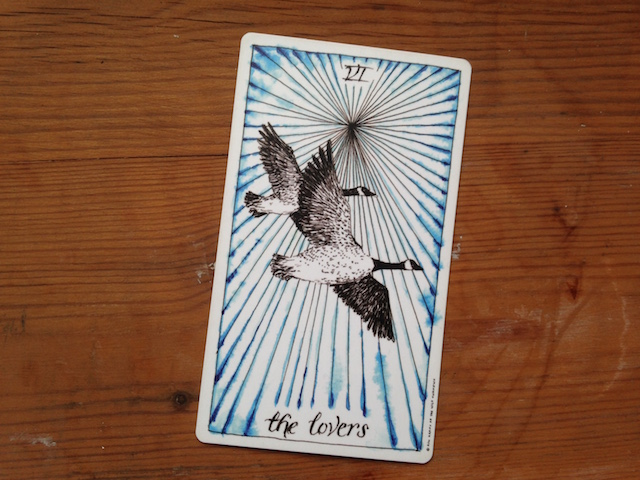 the-lovers-wild-unknown-tarot-card