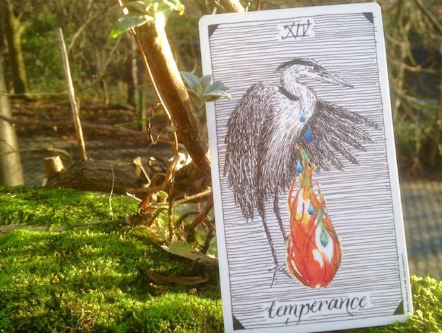 temperance-wild-unknown-tarot