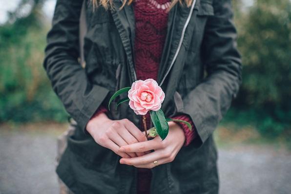 Rose [666045]
