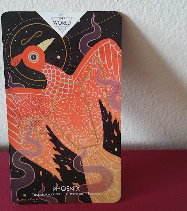 Pansexuality and the tarot star card