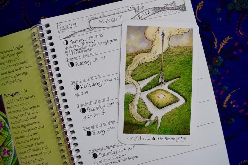 earth-pathways-diary07