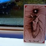 Wild Unknown Tarot - The Chariot
