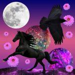 May full moon in SagittariusMay full moon in Sagittarius